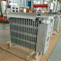 RB-2000/127(A)煤礦用增安型電熱取暖器