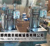 河南液压榨油机丨液压榨油机工作原理丨液压香油机